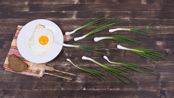 H2020 AND EMERGING PERSPECTIVES IN EU RESEARCH IN FOOD/FOOD&HEALTH-RELATED RESEARCH