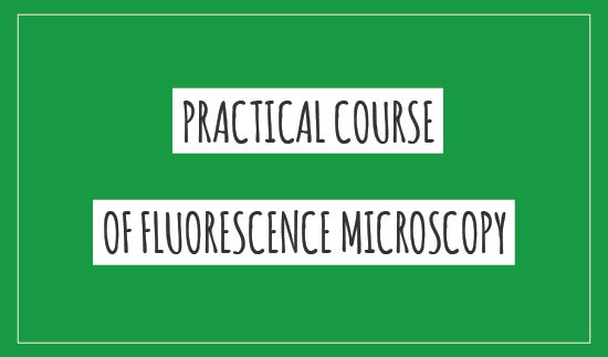 PRACTICAL COURSE OF FLUORESCENCE MICROSCOPY